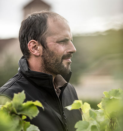 Vignerons - Damien Livera - Domaine Philippe Livera