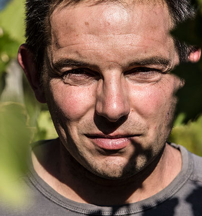 Vignerons - Guillaume Gilles