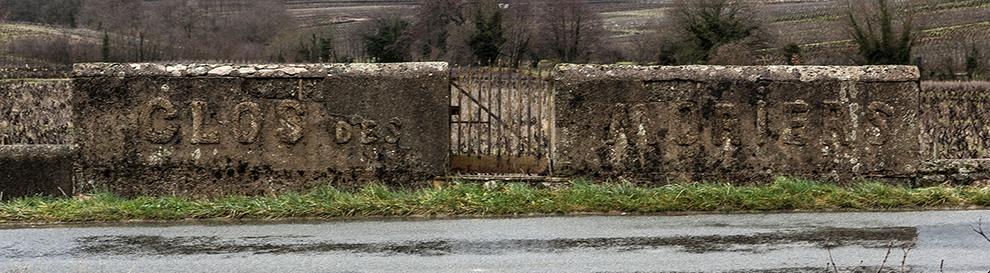 Domaine Chignard - Fleurie