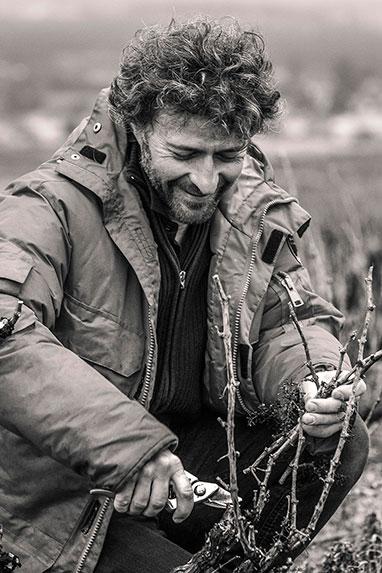 Cedric Chignard - Domaine Chignard - Fleurie