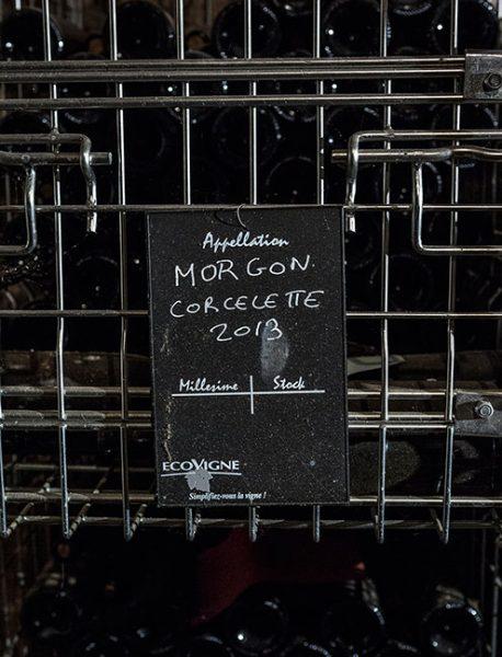 Domaine Mee Godard - Morgon