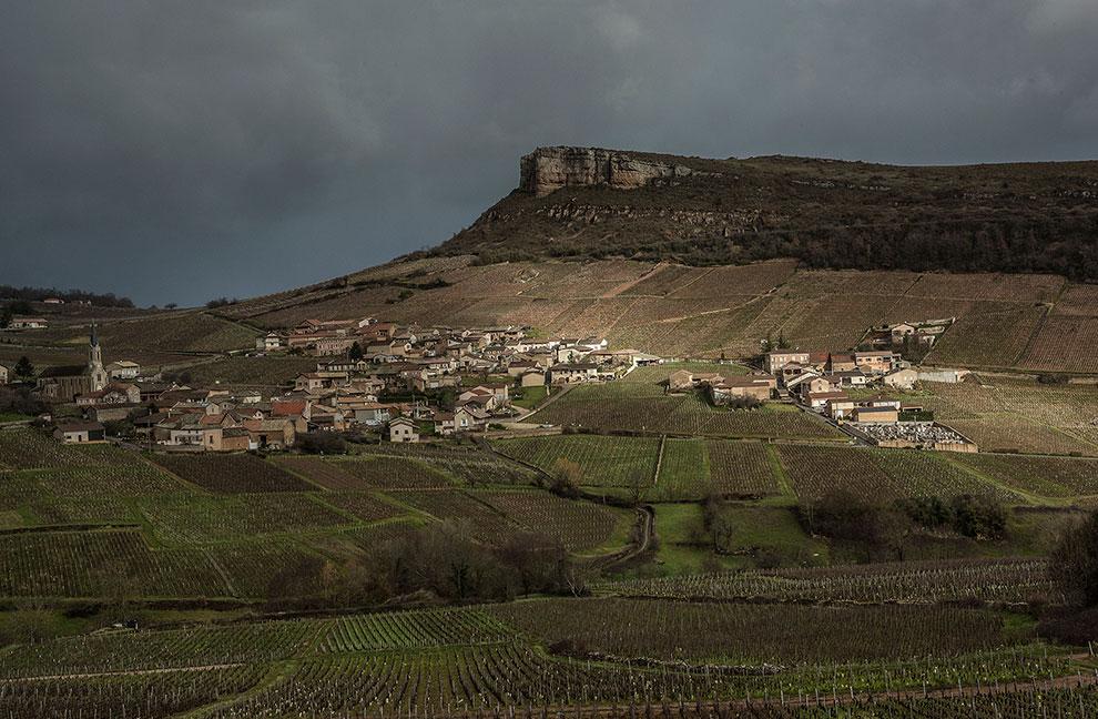 Domaine Saumaize-Michelin - Vergisson - Bourgogne - Roger Saumaize