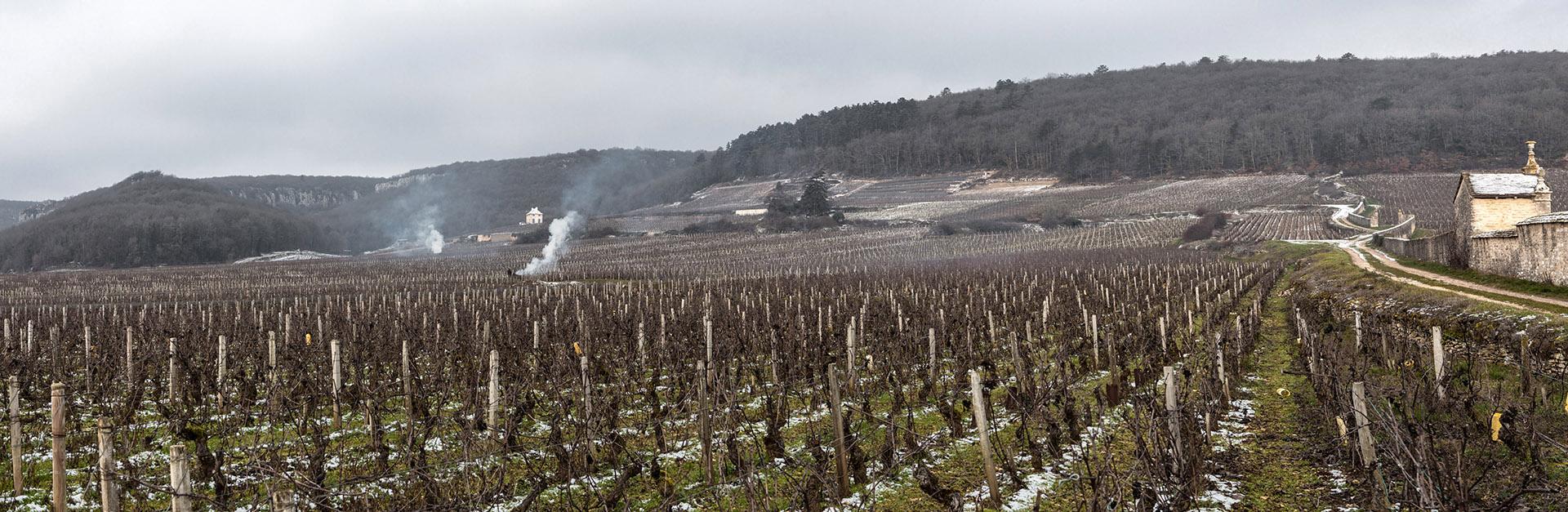Domaine Humbert Bourgogne Gevrey-Chambertin